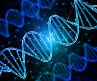 【47萬人基因研究】證實同性戀至少七成後天 推翻性學鼻祖的性傾向光譜假設